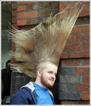 【面白画像】やばい髪型まとめ