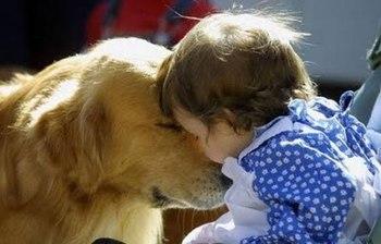 pets-and-babies-04.jpg